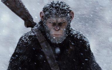 """RECENZIJA: Nikad od čovjeka pravog """"majmuna"""""""