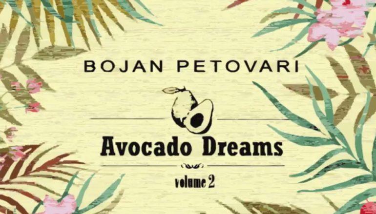 """Mladi Valpovčanin Bojan Petovari objavio drugi EP """"Avocado Dreams vol. 2"""""""