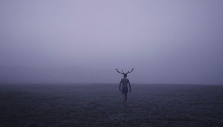 """""""Deer Boy"""", """"Ježeva kuća"""" i """"Manivald"""" na Sundanceu! """"Ježeva kuća"""" nominirana za """"Annie"""""""