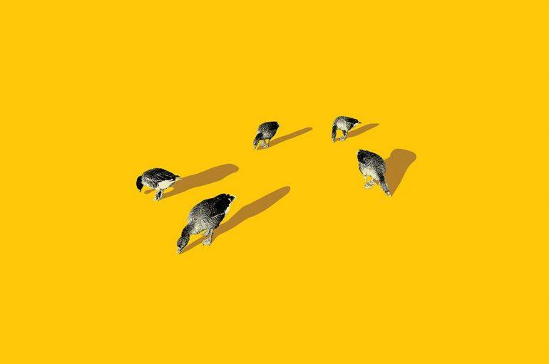 Coco Mosquito iz Jinxa najavio prvi samostalni instrumentalni album